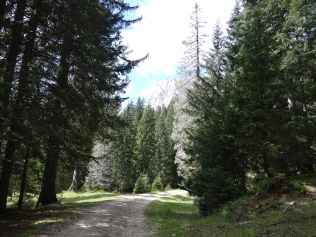 En route vers le lac Noir dans le Parc du Durmitor