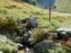 Une source dans le parc Biogradska Gora