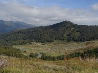Vue sur les montagnes et prairies