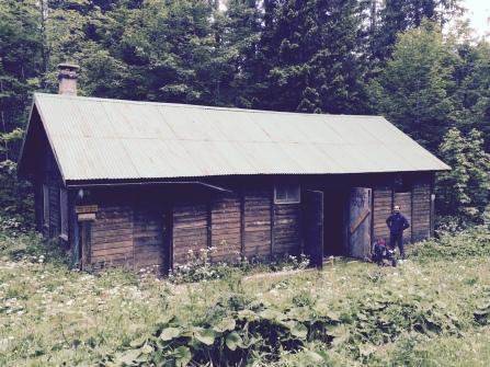 La cabane forestière du Turet