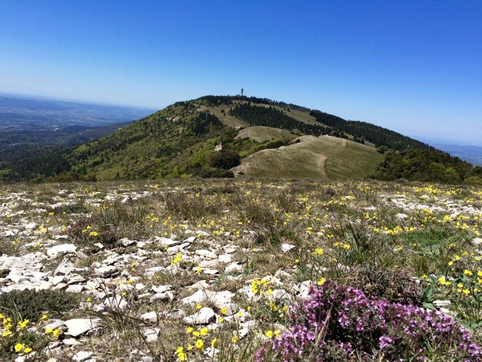 Les crêtes du massif du Luberon et le Mourre Nègre