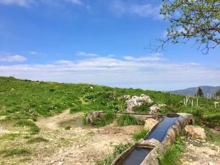 La source du Roybon