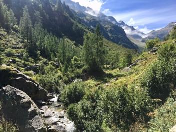 Vue sur la vallée en suivant l'Eau de Bérard