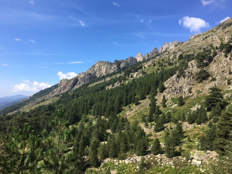 En sortant de la forêt en direction du refuge de Petra Piana