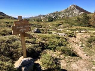 Les sentiers du plateau du Coscione