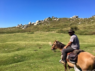 A cheval sur le plateau du Coscione