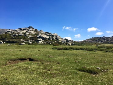 Les steppes du plateau du Coscione