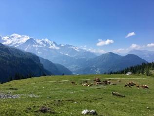 Vue sur le Mont Blanc depuis Ayères des Pierrières