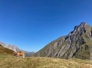 Sur le Tour du Mont Blanc - en descendant sur La Peule